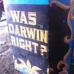 Was Darwin right?